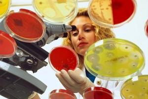 Лекарственная устойчивость микрорганизмов